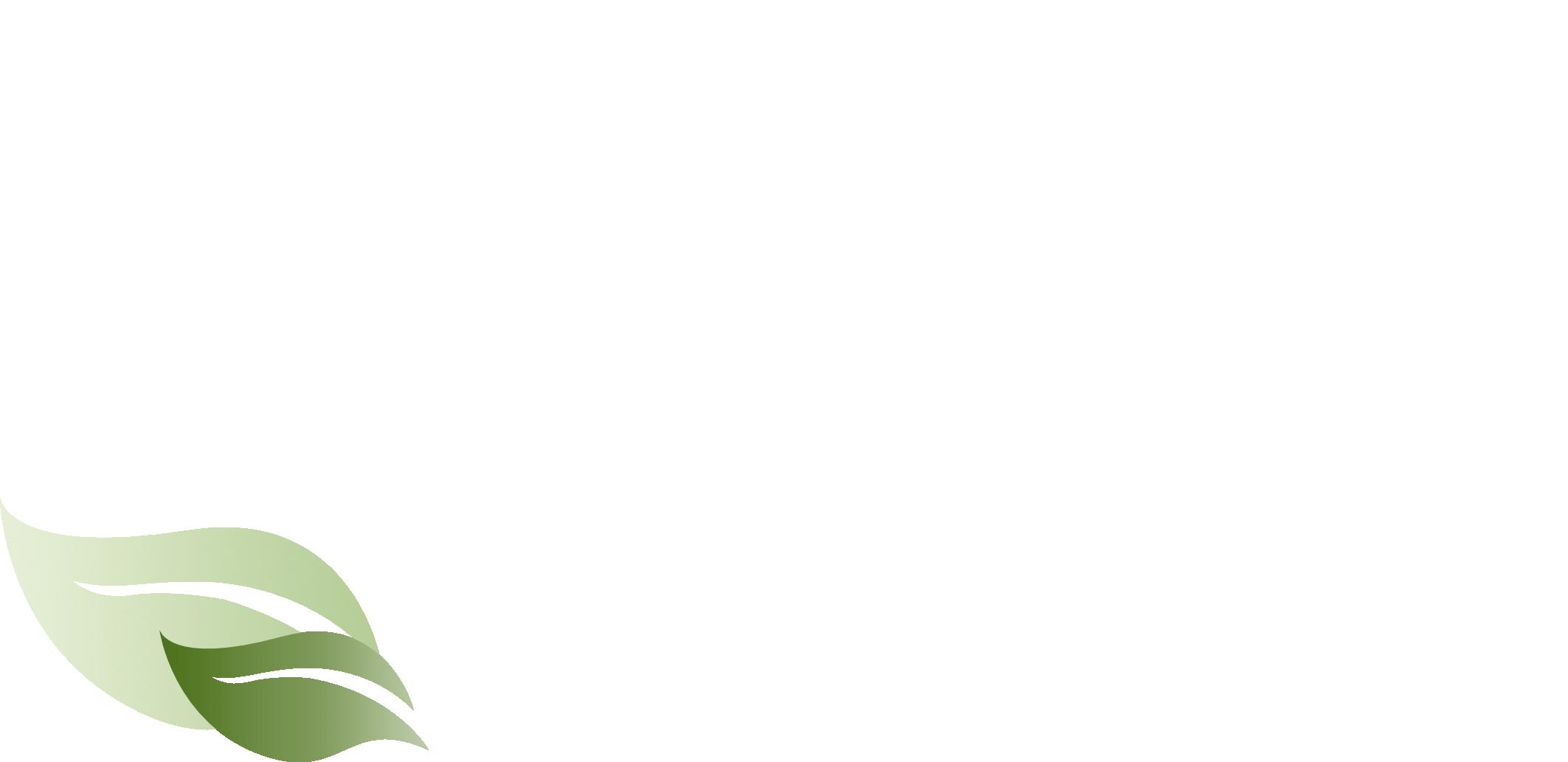 Aivilo